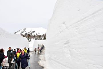 両側にそびえる雪壁を見上げながら歩く八甲田ウォークの参加者=30日午前