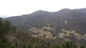 民家のすぐそばに野生のパンダ出現 四川省雅安
