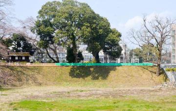 北西土塁の上に完成した歩道(手すりが覆われている部分)=小田原市城内