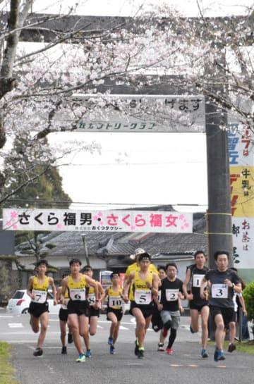 桜並木を駆け抜け、母智丘神社への一番乗りを競った「さくら福男・さくら福女」の参加者