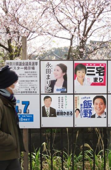 新人4人のポスターが並ぶ県議選鎌倉市選挙区の掲示板=同市内