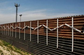 Tennessee Rep. Diane Black Proposes Crowdfunding Trump's Border Wall
