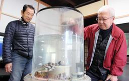 空き家に置いた水槽で福良湾の魚を飼育する河野博さん(右)と榊秀一さん=南あわじ市福良乙