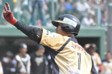 独立リーグで自身1号となる2ランを放った栃木・西岡剛【写真:小西亮】