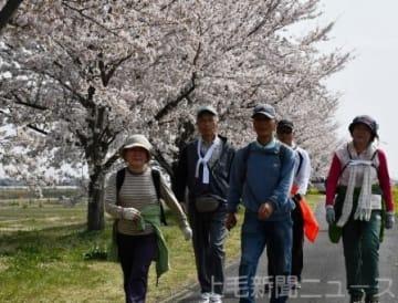 桜並木を歩く参加者