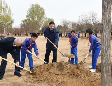 習近平氏ら党と国家指導者、北京で首都義務植樹活動に参加
