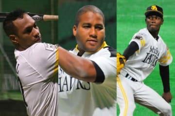 ソフトバンクに所属するキューバ人選手のグラシアル、デスパイネ、モイネロ(左から)【写真:藤浦一都】