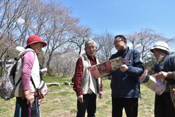 観光客に「桜川のサクラ」を案内する橋本慶晴さん(左から3人目)=桜川市磯部