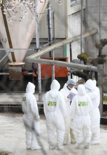 豚コレラが発生した愛知県瀬戸市の養豚場周辺に集まった防護服姿の陸上自衛隊員=10日午後