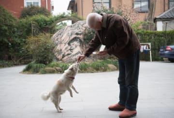 中国の高齢者が「互助グループ」を結成 浙江省杭州市