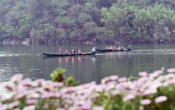 山紫水明の風景 普者黒国家湿地公園 雲南省丘北県