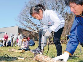 ほだ木に菌を植え込む穴を開ける参加者ら