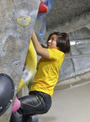 柔道女子の強化合宿でボルダリングに挑戦する芳田司=17日、東京都杉並区
