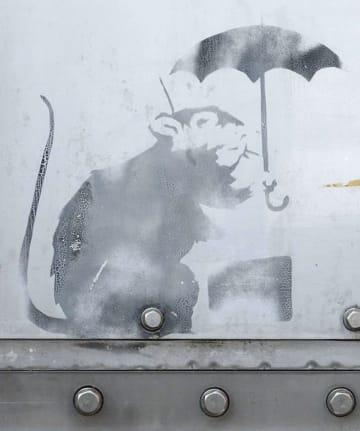 都庁で展示される、バンクシーの作品に似たネズミの絵=1月、東京都港区(東京都提供)