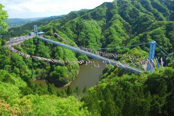 竜神大吊橋と竜神峡を渡るこいのぼり(昨年)=常陸太田市天下野町(同市観光物産協会提供)