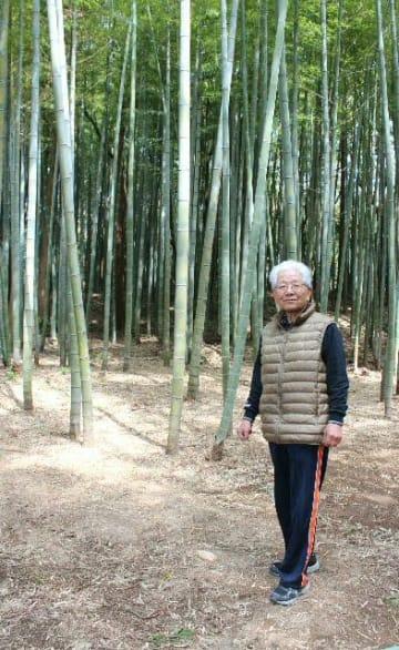 地域活性化のため、所有する竹林を整備した恒松栖さん=別府市湯山
