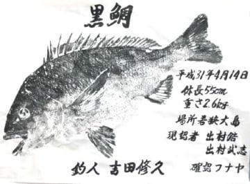 福井市の吉田さんが若狭大島沖で釣ったチヌの魚拓