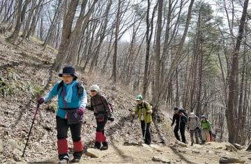 山の春を楽しみながら山頂を目指す登山者