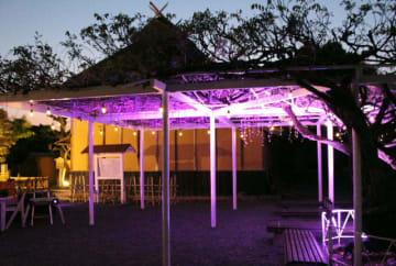 試験的にライトアップされた藤棚=中津市留守居町の福沢旧居
