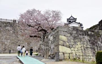 후쿠시마・고미네성, 축벽 복원