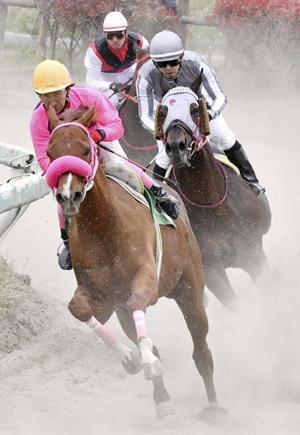 騎馬武者、ジョッキー姿で迫力レース 相馬野馬追振興春季競馬
