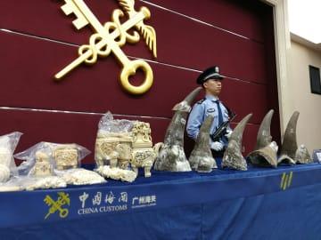 広州税関、絶滅危惧種と関連製品の密輸取り締まりで成果