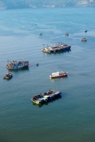 韓国海洋警察庁、中国漁船5隻を拿捕―中国メディア