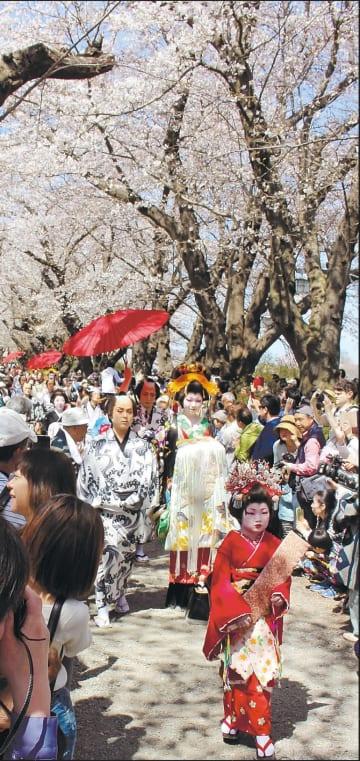 桜並木の下を練り歩いた「おいらん道中」=21日、北上市の展勝地