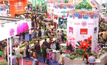 中国の花卉消費の五大変化