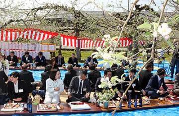 リンゴの花に豊作祈る魚津 加積りんご組合100人交流
