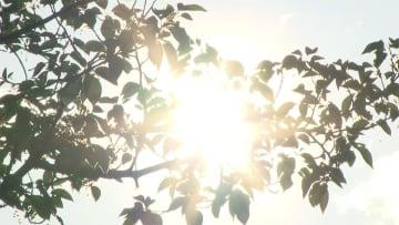 都心で2019年初の夏日 大分・高知は30度超え