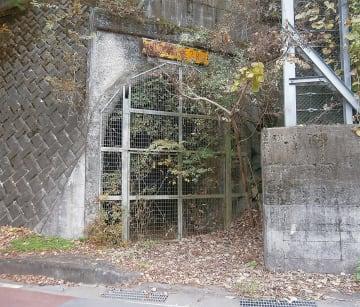 20年間放置されていた中川の廃トンネル