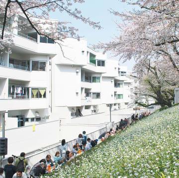 桜を楽しみながら50周年を祝ったガーデンパーティー