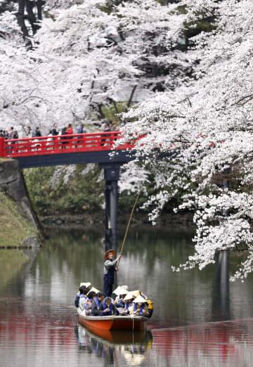 히로사키 벚꽃이 제철 맞이