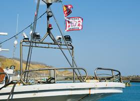 潮風になびく、漁船に掲げられた「火乃用心」の旗=提供写真