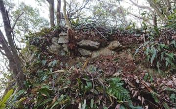 岐阜城がある岐阜市の金華山山頂部で見つかった、斎藤道三が築城した当時のものとみられる石垣(岐阜市提供)