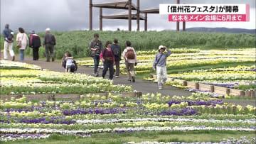 「信州花フェスタ2019」開幕