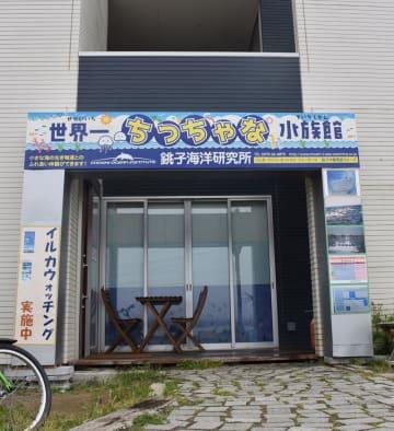 銚子海洋研究所がプレオープンさせた「世界一ちっちゃな水族館」
