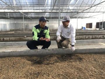 「昆虫農場」で食品廃棄物処理 年間数千トン 杭州市