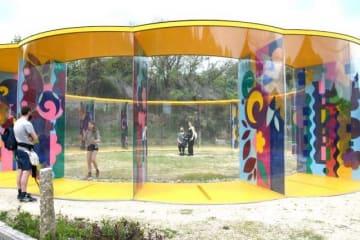 カラフルな模様が目を引く家プロジェクト「A邸」を鑑賞する人たち=岡山市・犬島
