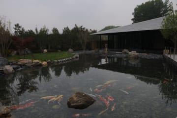 日本庭園を訪ねて 北京国際園芸博覧会