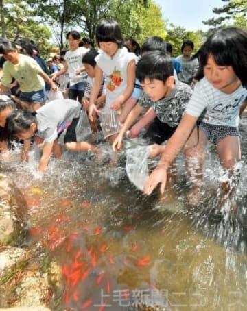 魚のつかみ捕りをする子どもたち