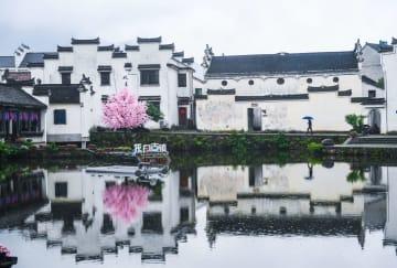 江南の古鎮で「百花大会」開催 浙江省杭州市