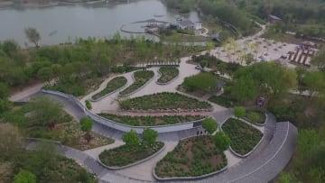 ボタンの花咲く自然公園 河北省廊坊市