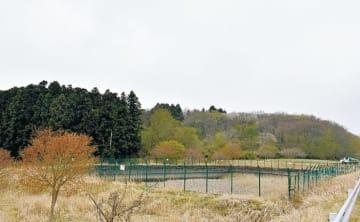 液体バイオマス発電所の建設予定地付近=宮城県石巻市須江