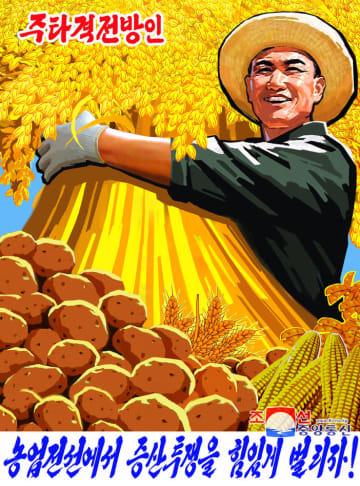 北朝鮮の金正恩朝鮮労働党委員長が新年の辞で示した課題貫徹を促すポスター。「主力を注ぐべき農業部門が増産闘争を力強く繰り広げよう!」と書かれている(朝鮮通信=共同)
