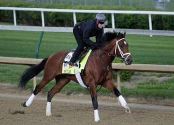 Kentucky Derby 2017 preview