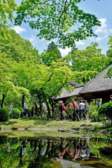 九年庵の一般公開が始まり、青空の下、新緑に包まれた庭園を楽しむ観光客=3日午前、神埼市神埼町(撮影・山口源貴)