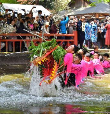 池の中で水しぶきを上げる蛇=5日午後1時、小山市間々田
