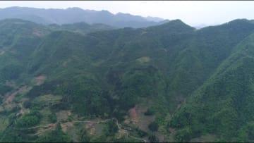世界最大級の「巨大穴」の謎に迫る 陝西省漢中市の天坑群